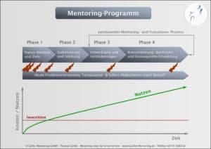 Mentoring-Ablaufschema